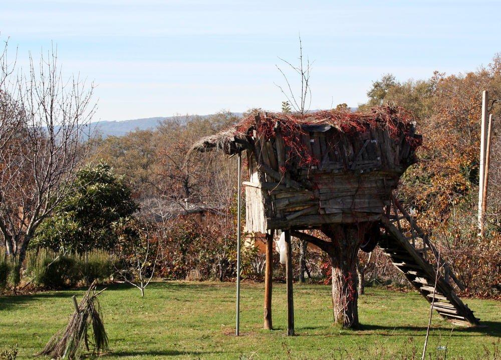 Hogar arbóreo (Alberto Arcos Hurtado)