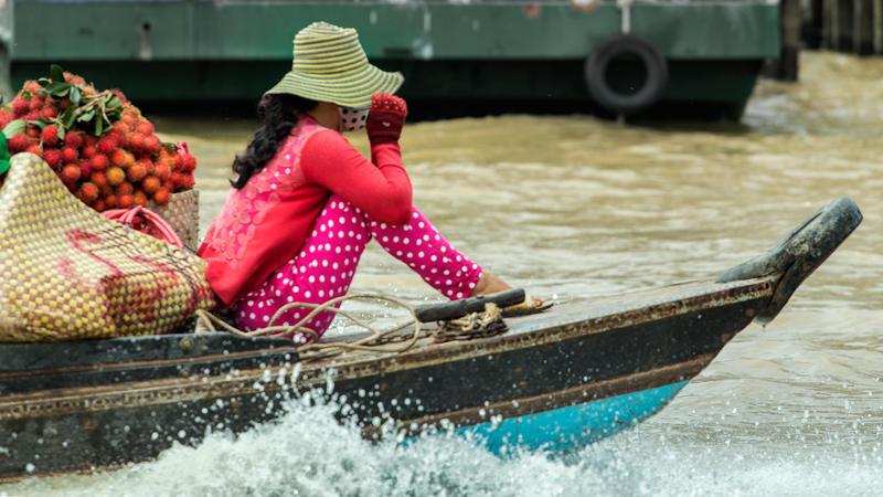 la chica de los rambutanes (Jose Luis Rubio Perez)