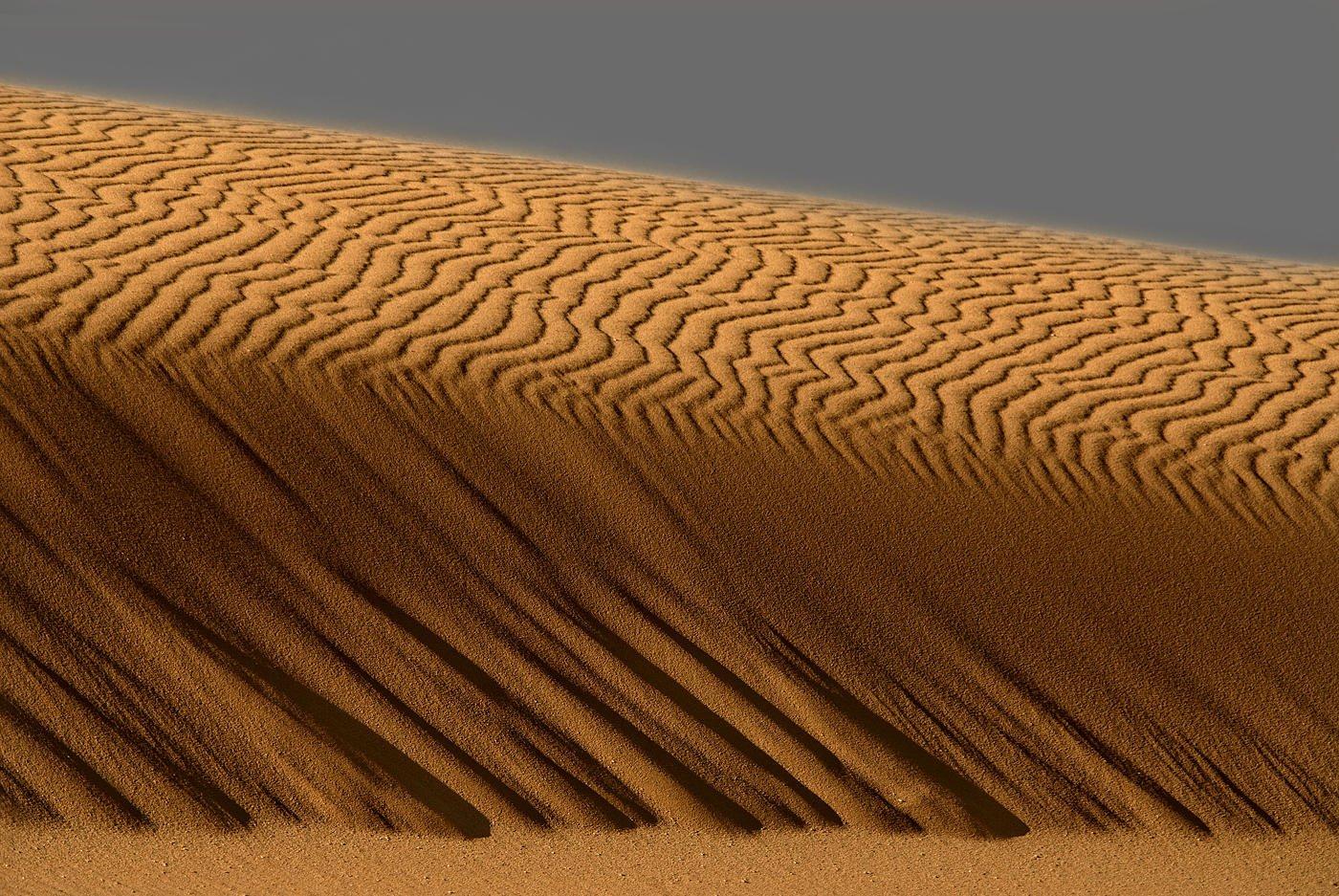 La duna (Salvador Solé Soriano)