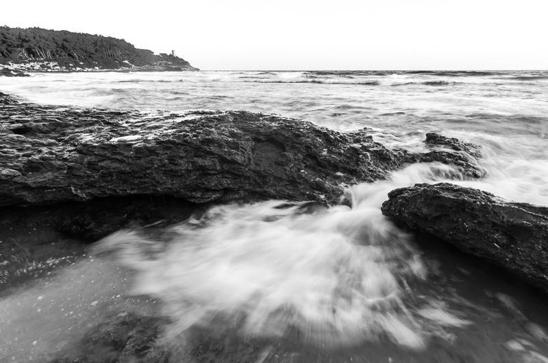 La mora (Abrahan Manuel Francisco)