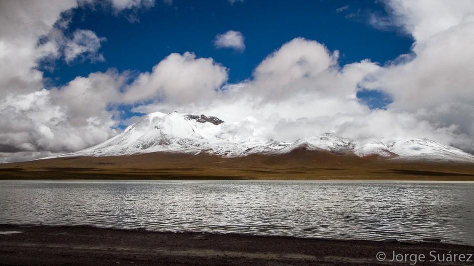 Laguna Hedionda (Puna boliviana) (Jorge Suárez)