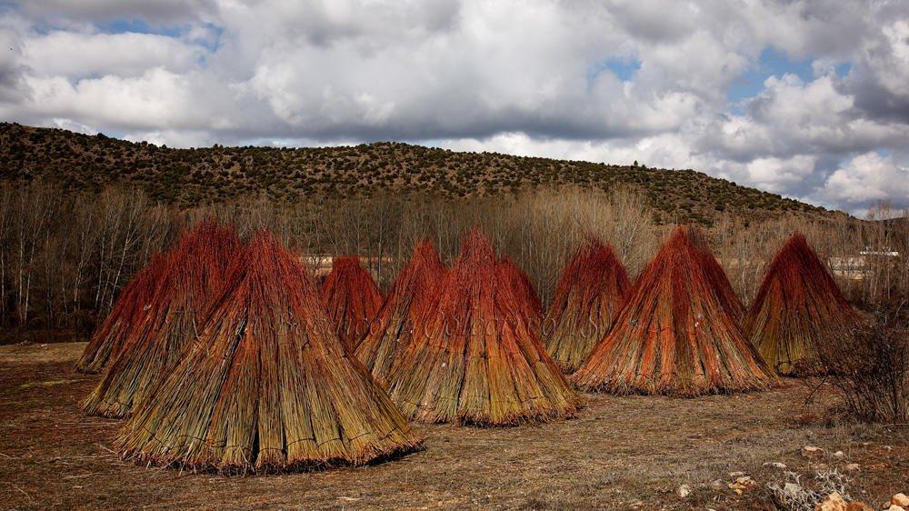 Las llamas del infierno (Txema Bacaicoa (Colectivo IS))