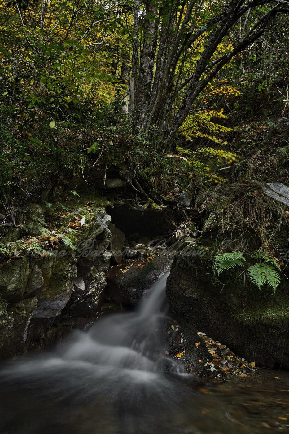 Lugar del Río (Txema Bacaicoa (Colectivo IS))