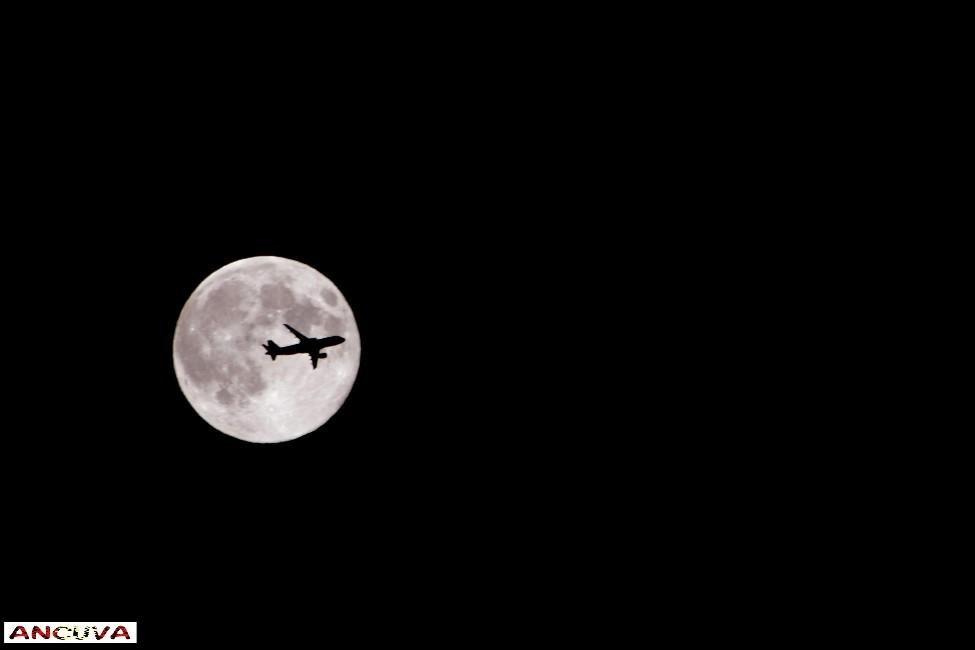 luna rellena, (Antonio Cuenca.   vaya)