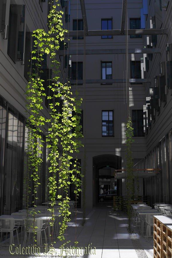 Luz en verde cascada (Txema Bacaicoa (Colectivo IS))