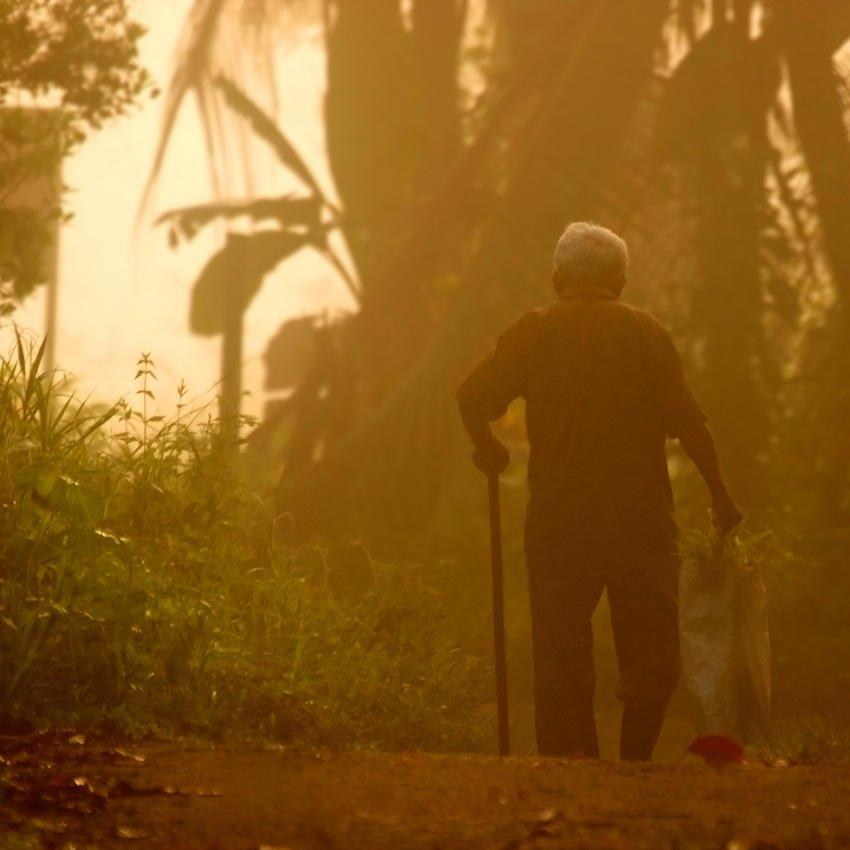 Madrugador, el abuelo (Salvador Solé Soriano)