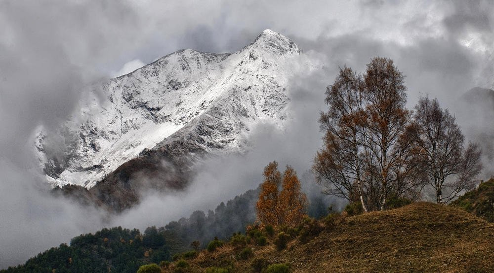 Montes de Montgarri (Salvador Solé Soriano)