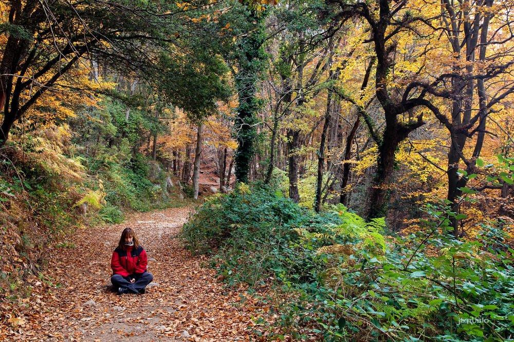 Montseny meditativo (Jose Luis Rubio Perez)