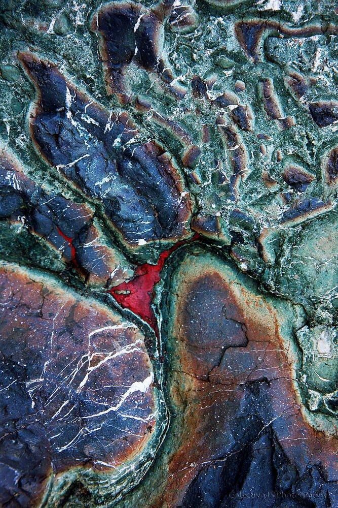 Mundo marciano (Txema Bacaicoa (Colectivo IS))