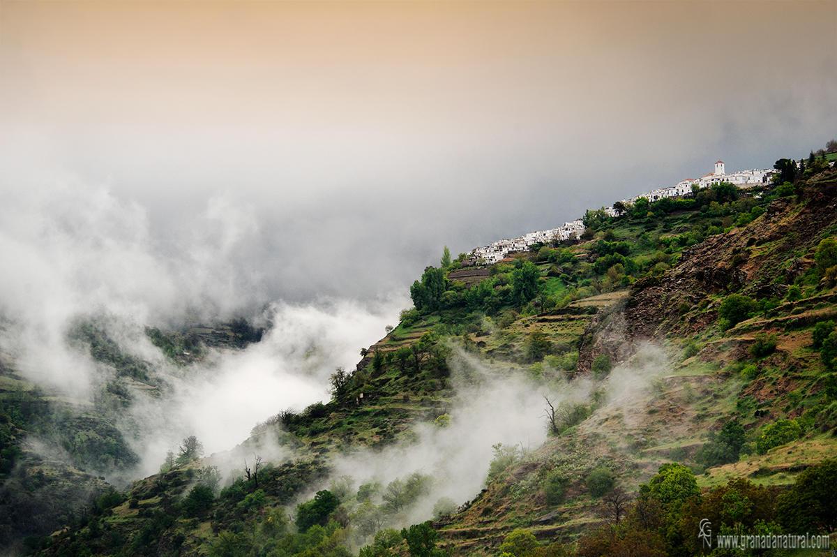 Nieblas en el barranco del Poqueira (Lucas Gutierrez Jiménez)