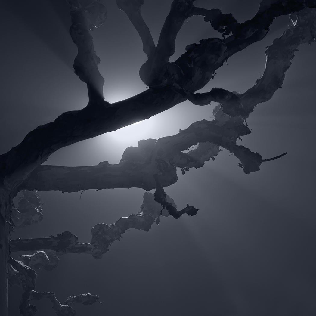 Noche de invierno en Tremp. (Salvador Solé Soriano)