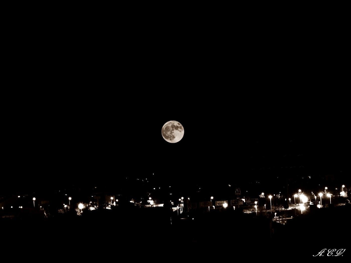 Nocturna. (Antonio Cuenca.   vaya)