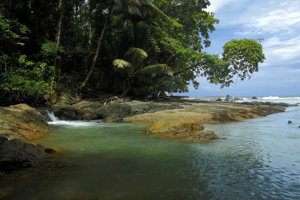 Paraísos naturales (Pepi Sánchez Sabater)