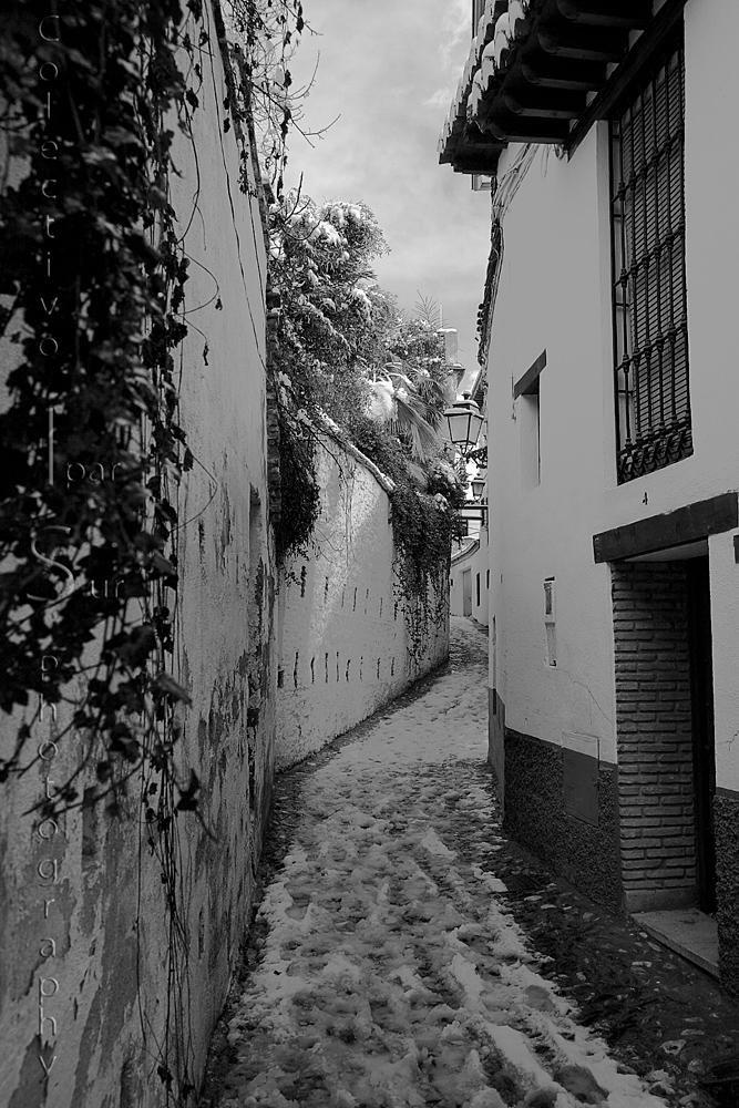 Paseando por el Albaicín  (Txema Bacaicoa (Colectivo IS))