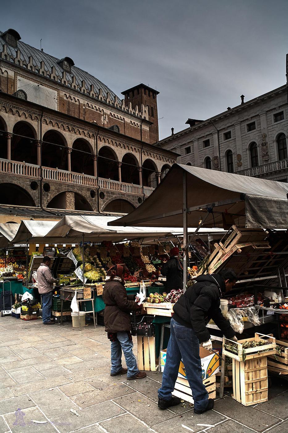 Plaza del mercado (Txema Bacaicoa (Colectivo IS))