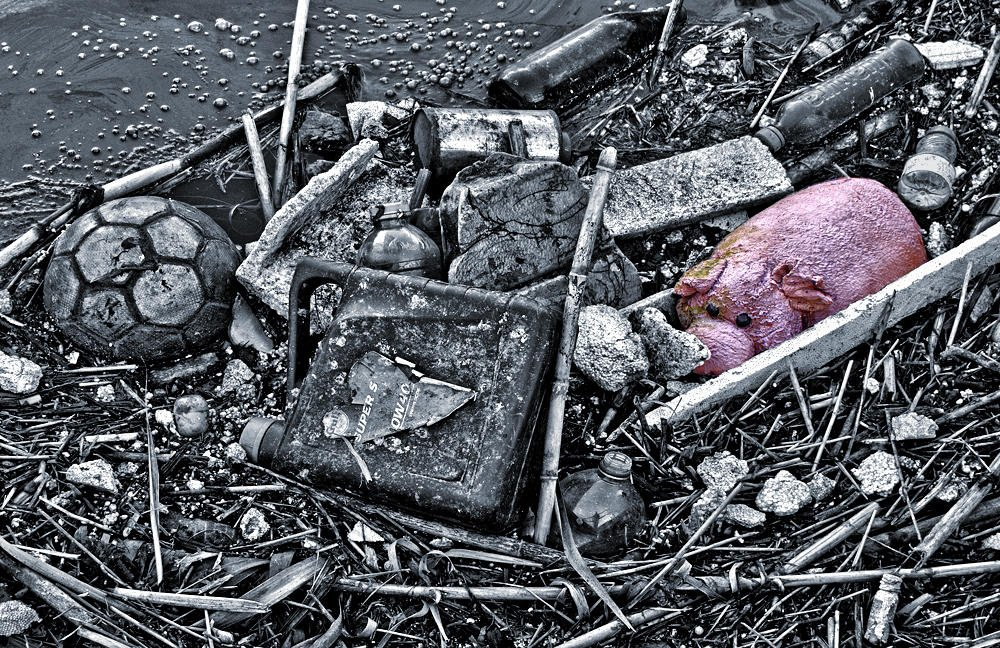Porca miseria (Salvador Solé Soriano)