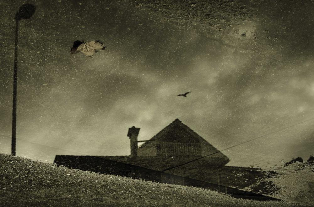 Portal a otro mundo (Abrahan Manuel Francisco)