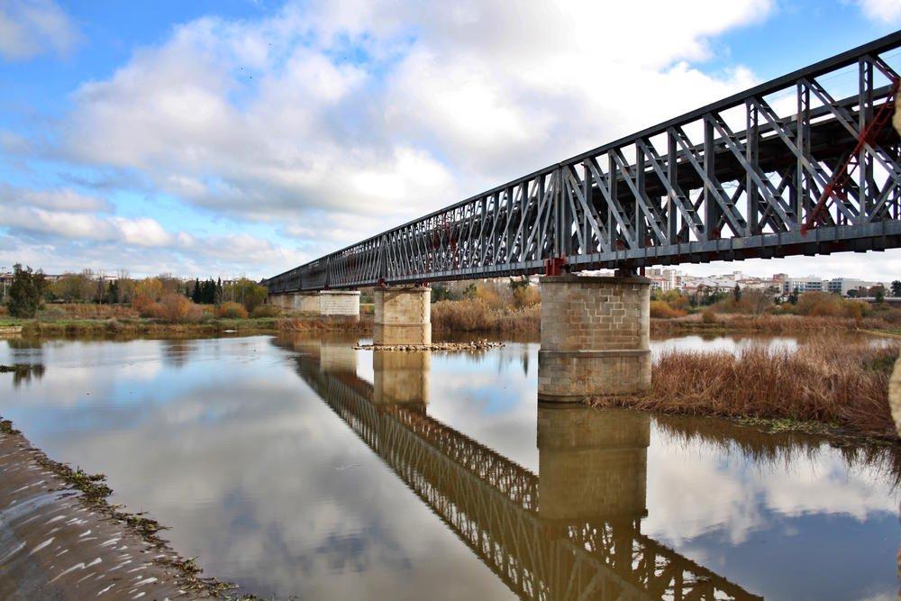 Puente de hierro (Alberto Arcos Hurtado)