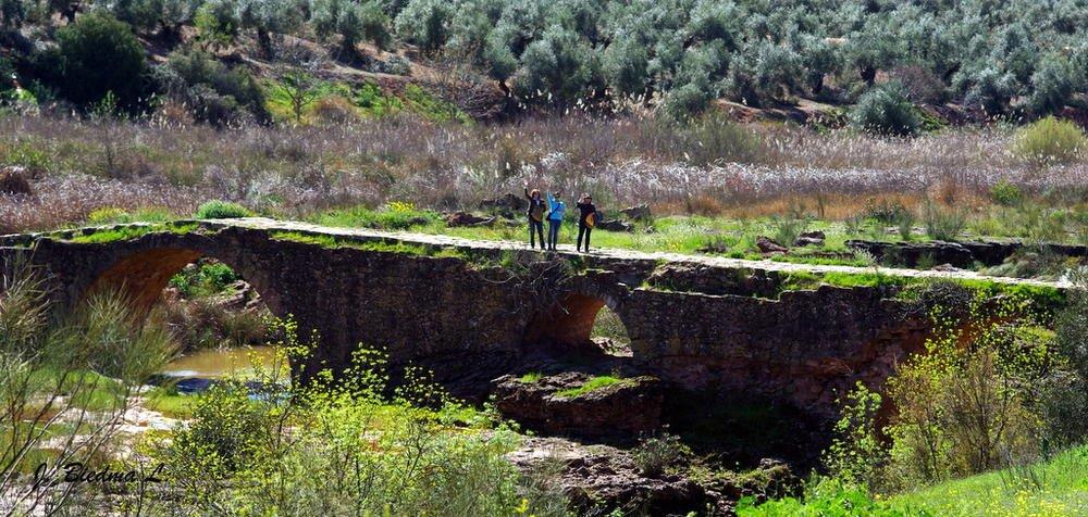 Puente Mocho (José Biedma López)