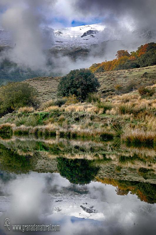 Reflejos en Almiar ( Parque Nacional de Sierra Nevada) (Lucas Gutierrez Jiménez)