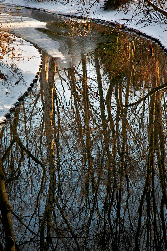 Reflejos en Tiergarten (Txema Bacaicoa (Colectivo IS))
