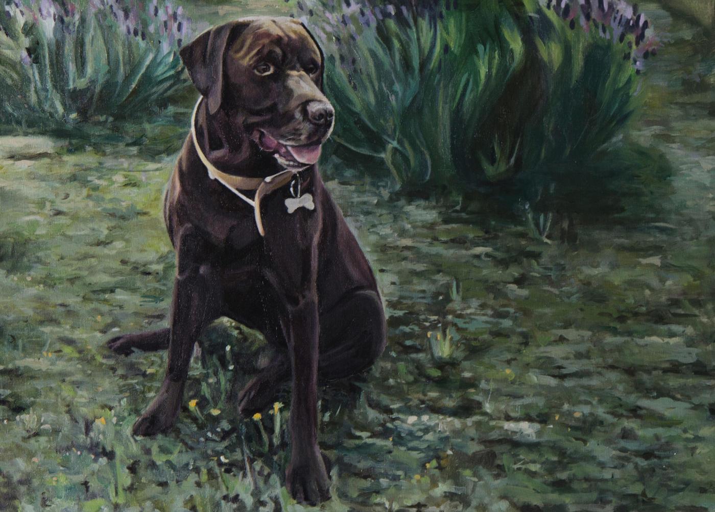 Retrato un perro llamado Gacel (Galeria Del Retrato)