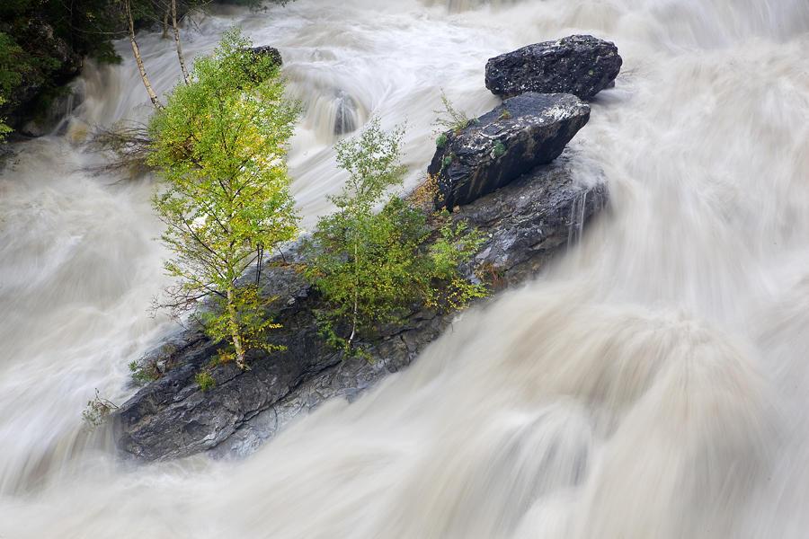 Río Ara (david Pérez Hens)