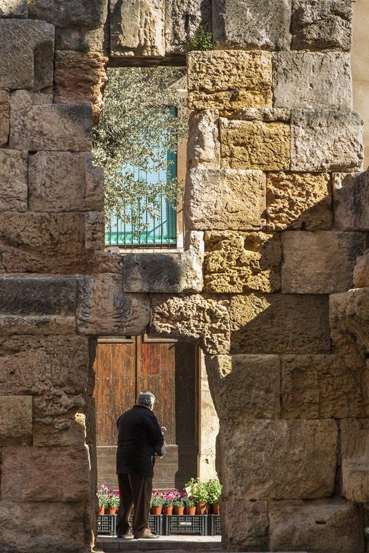 ruinas integradas (Jose Luis Rubio Perez)