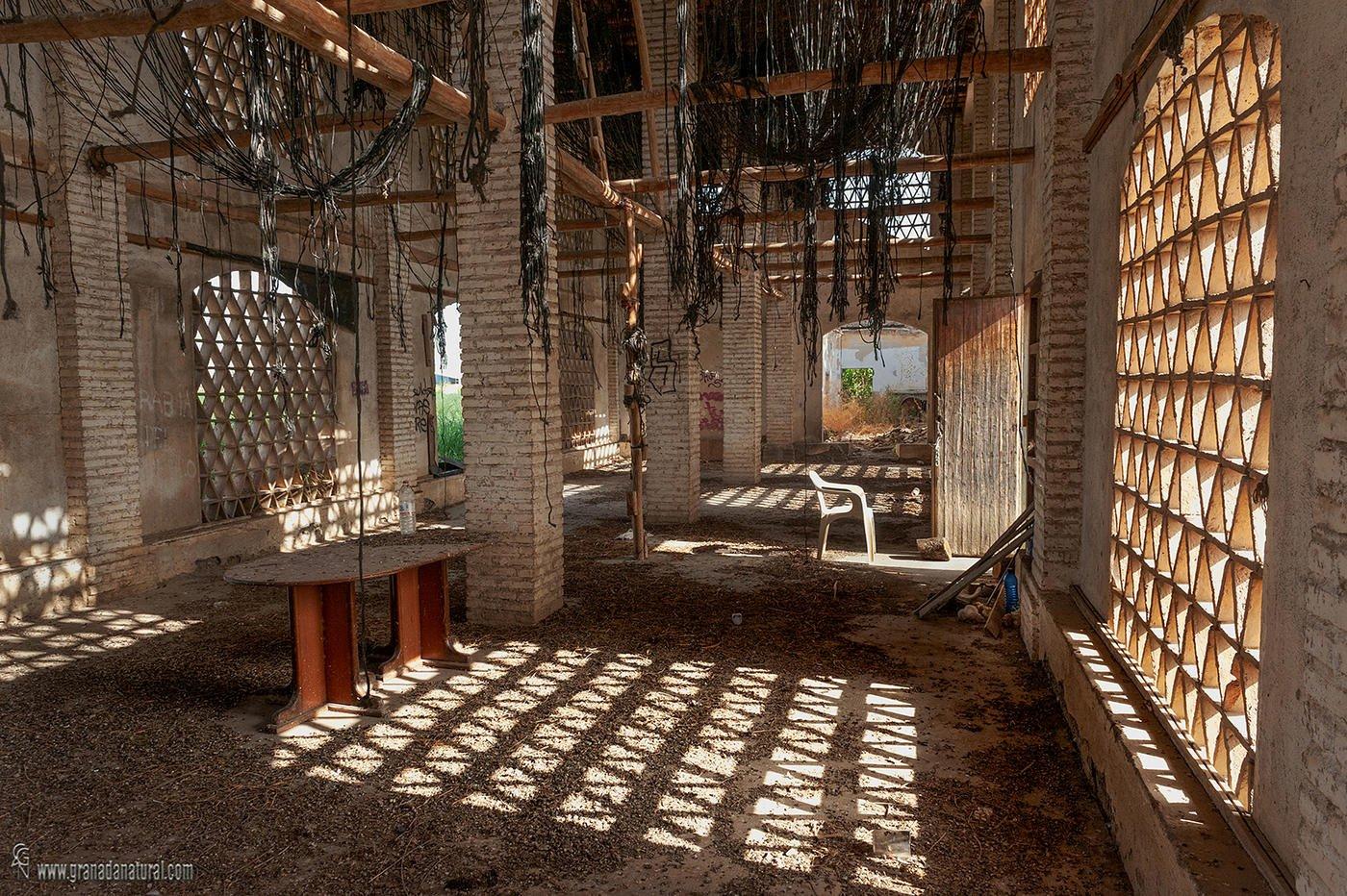 Secadero de tabaco (Vega de Granada) (Lucas Gutierrez Jiménez)