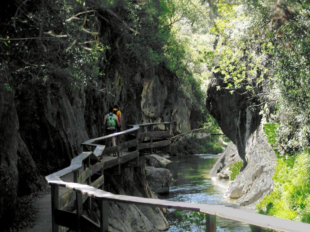 Sendero sobre río Borosa (Angel Fernández)