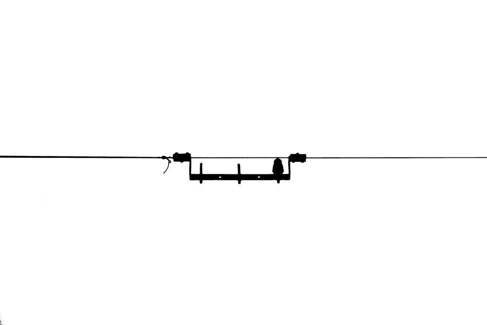 Simplicidad (Alberto Arcos Hurtado)