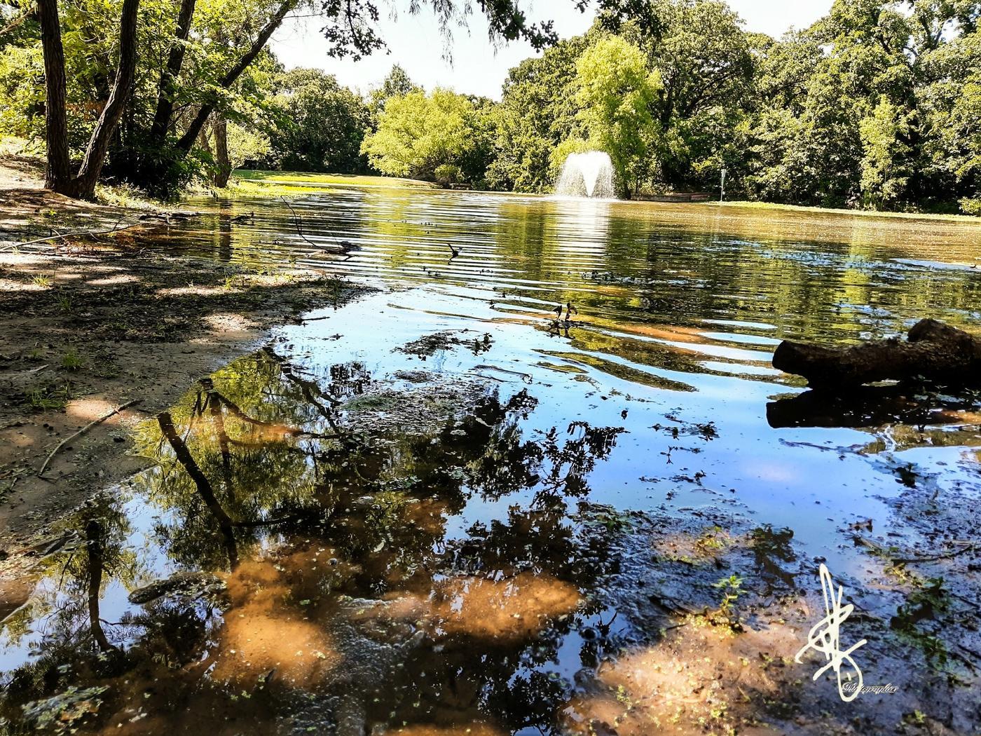 Lago (Antonio Rodriguez)