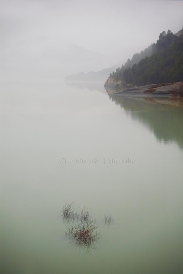 Sutilezas en niebla y agua (Txema Bacaicoa (Colectivo IS))