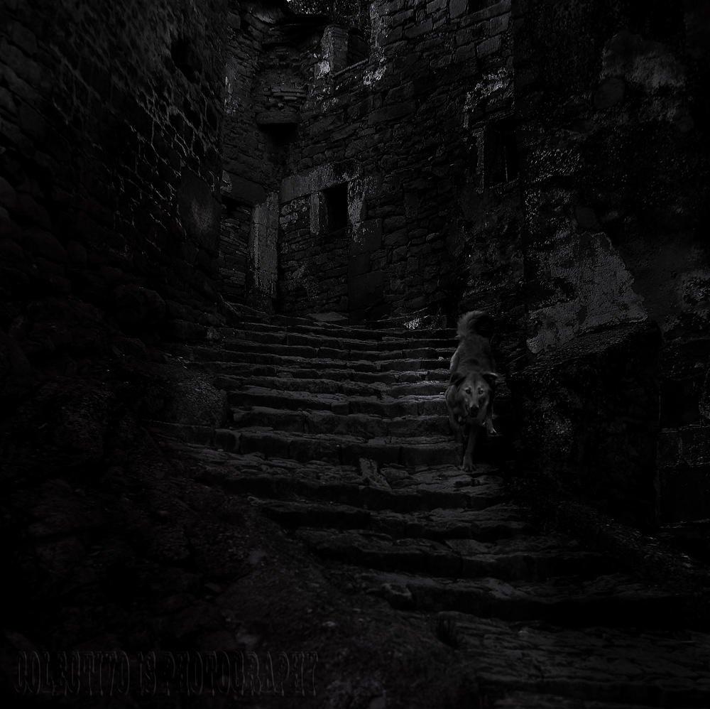 Temores ancestrales (Txema Bacaicoa (Colectivo IS))