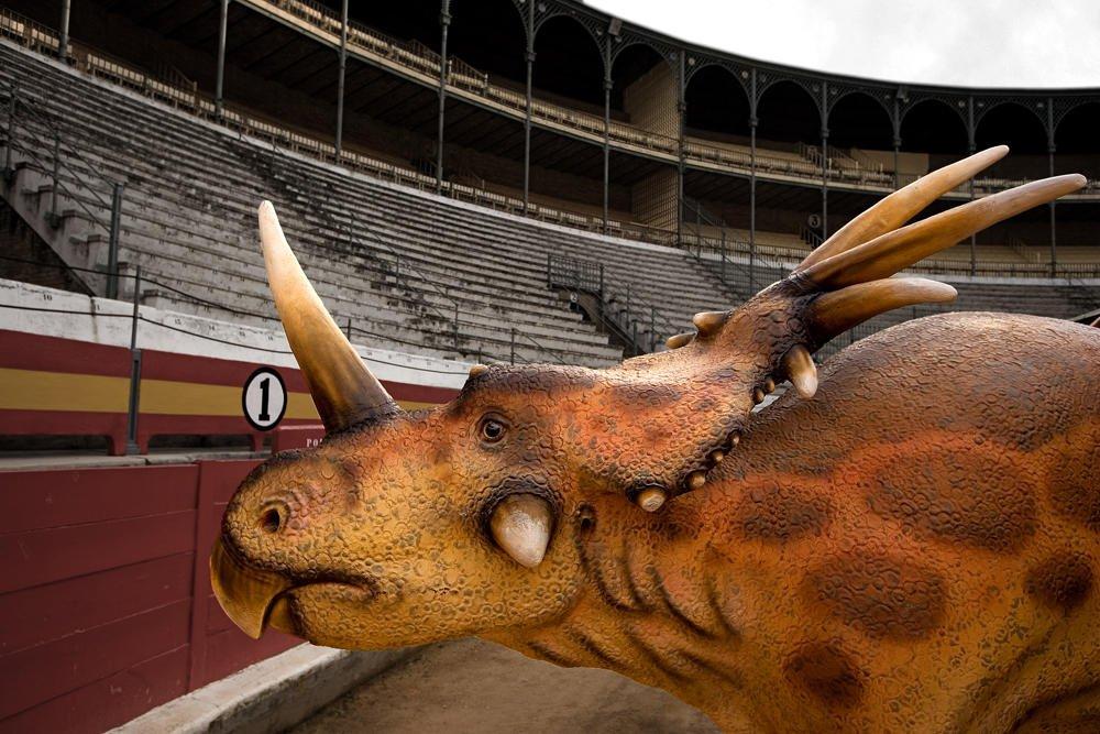 Torear el Triceratops (Salvador Solé Soriano)