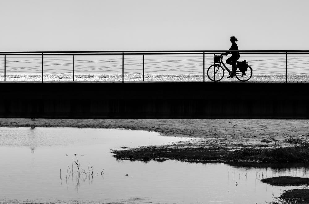 Un paseo en bicicleta (Abrahan Manuel Francisco)