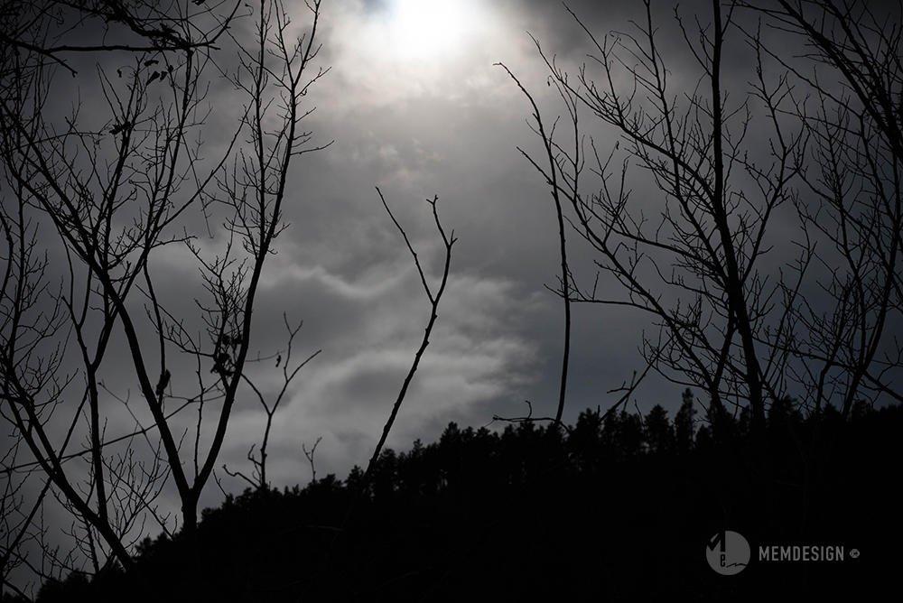 Under grey pale sky (Manel Memdesign)