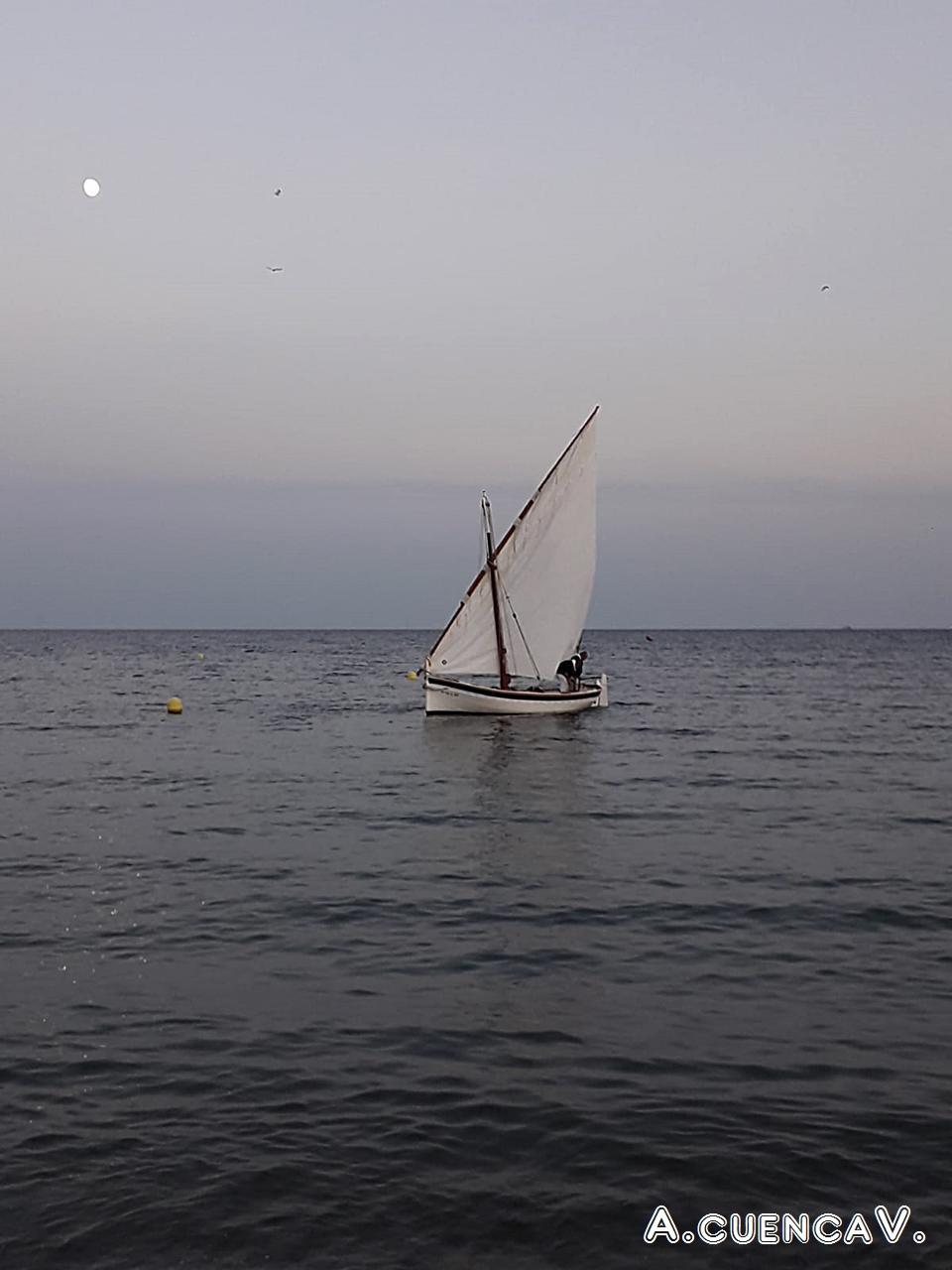 vela latina en el Delta (Antonio Cuenca.   vaya)