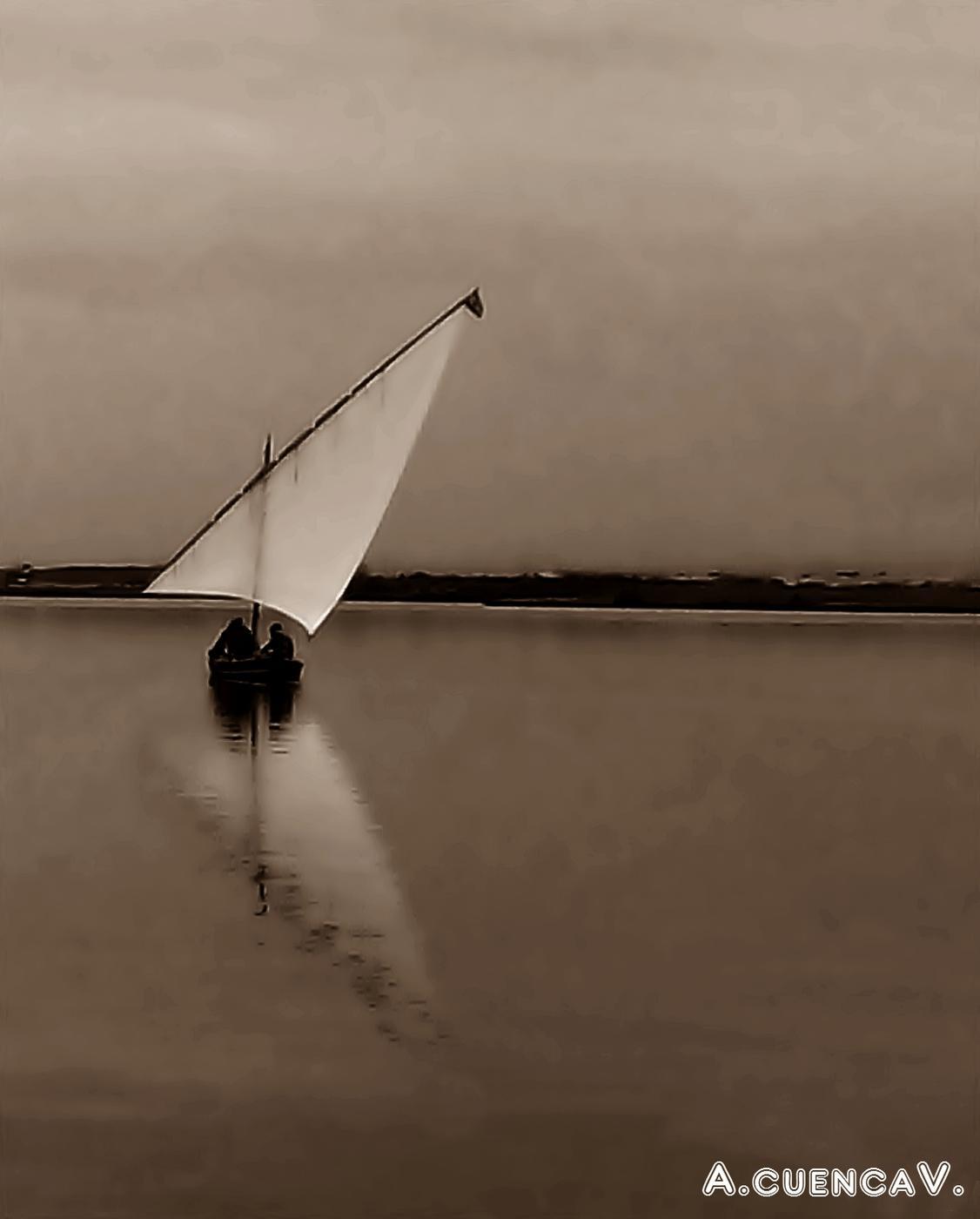 vela latina en el Delta II. (Antonio Cuenca.   vaya)