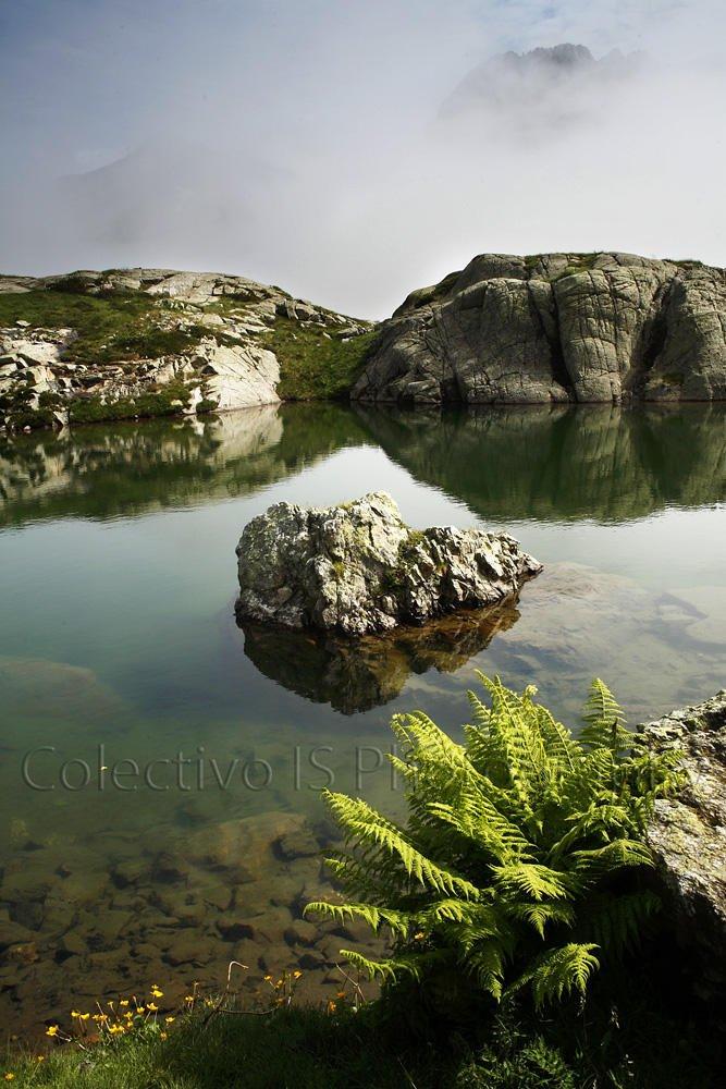 Verde y niebla (Txema Bacaicoa (Colectivo IS))