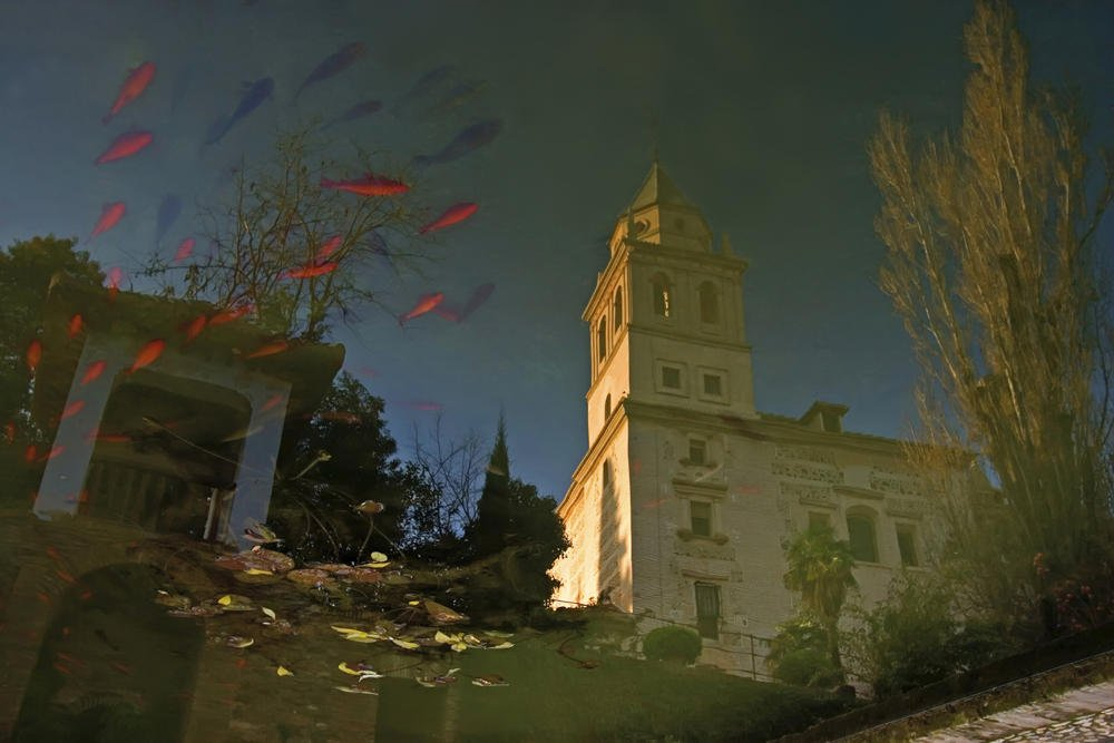 Vi peces en el cielo. (Salvador Solé Soriano)