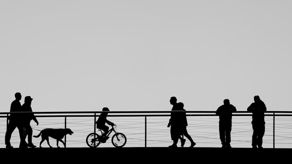 Vidas diferentes (Abrahan Manuel Francisco)