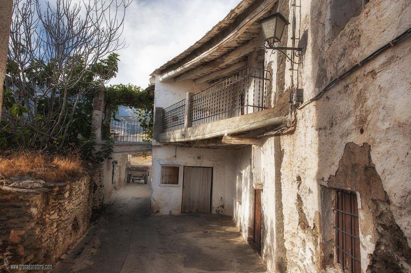 Viejos tinaos y casas alpujarreñas ( Bubión) (Lucas Gutierrez Jiménez)