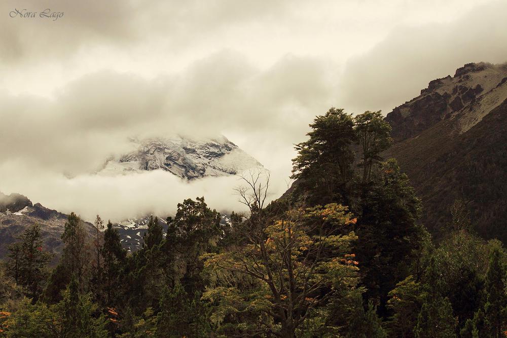 Vista al majestuoso Lanin (Norma   Betty Lago)
